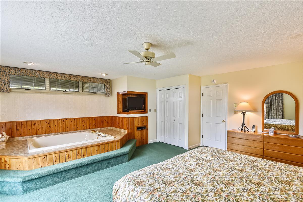 Lower Level-Bedroom 1-_DSC9919